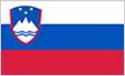flag_si